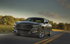 Картинка Dodge, Charger, R/T, 2015