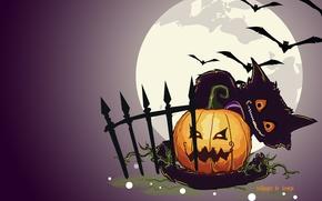 Картинка кот, ночь, луна, забор, тыква, hallowen