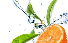 Картинка вода, брызги, апельсин, цитрус
