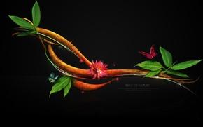 Обои Wave of Nature, Веточка, Природа, Бабочки, Листочки