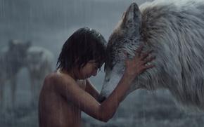 Картинка мальчик, Маугли, The Jungle Book, Книга джунглей, Ракша