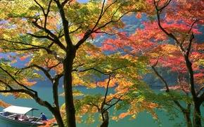 Обои Лодка, Осень, Япония
