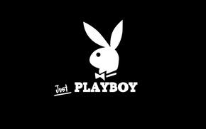 Картинка кролик, журнал, плейбой