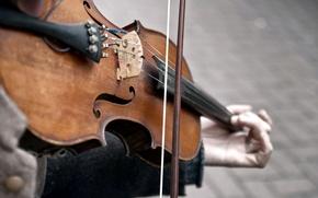 Обои игра, скрипка, музыка