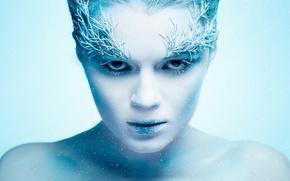 Картинка иней, снег, портрет, Ice Queen