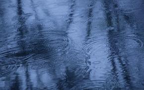 Картинка осень, вода, отражение, дождь, лужа