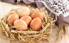 Обои яйца, салфетка, колосья, гнездо