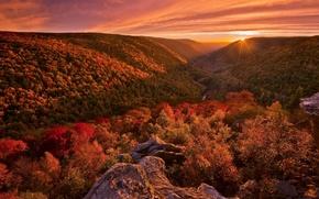 Картинка осень, лес, пейзаж, закат, краски, свет. природа