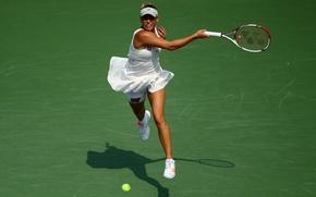 Обои тенис, возняцки, спорт