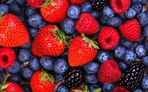 Обои ягоды, малина, черника, клубника, ежевика, berries, blueberries, strawberries, blackberries, raspberries