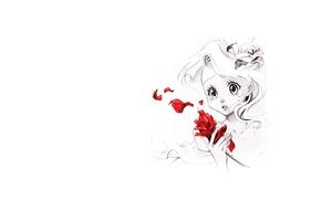 Картинка цветок, настроение, роза, минимализм, аниме, арт, девочка, слеза, Naschi
