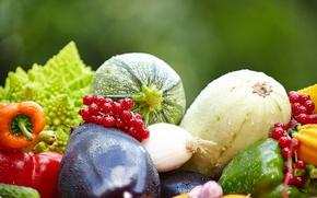 Обои смородина, кабачки, баклажаны, фрукты, овощи