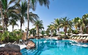 Картинка пальмы, бассейн, курорт, Palma de Mallorca, Baleares