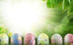 Картинка небо, трава, листья, облака, лучи, цветы, природа, праздник, яйца, весна, Пасха, Easter