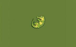 Обои зеленый, минимализм, крокодил, ящер, глазастый, аллигатор, зубастый, Crocodile