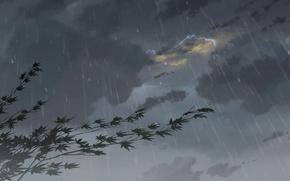 Картинка Капли, Дождь, Тучи, Гроза, Аниме, Clouds, Макото Синкай, Anime, Клён, Rain, Fog, Drops, The Garden …