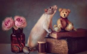 Картинка игрушка, книги, мышь