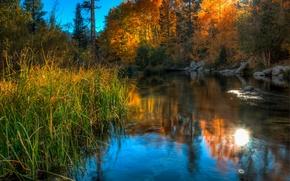 Обои небо, деревья, озеро, камни, трава
