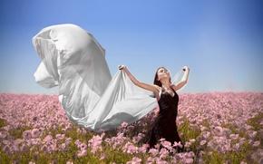 Обои поле, свобода, девушка, цветы, ветер