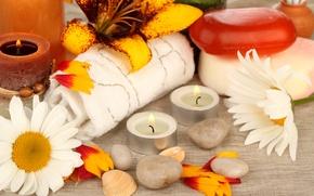 Картинка цветы, камни, ромашки, свечи, лепестки, мыло, ракушки, полотенца, спа