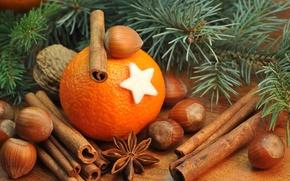 Обои апельсин, ель, ветка, орехи, корица