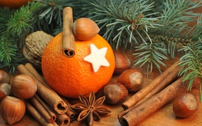 Картинка апельсин, ель, ветка, орехи, корица