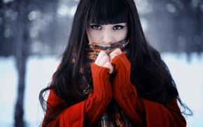 Картинка зима, взгляд, лицо, Девушка, шарф, брюнетка, свитер