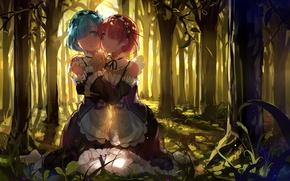 Обои anime, baisi shaonian, Re: Zero kara Hajimeru Isekai Seikatsu, сёстры, art, Rem, лес, девушки, Ram