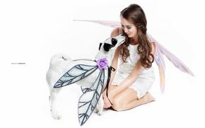 Картинка девушка, фон, собака
