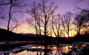 Обои зима, снег, ручей, Деревья