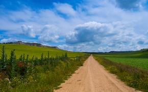 Картинка дорога, зелень, небо, трава, облака, поля, простор, Испания, вдаль, Castilla