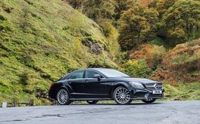Картинка CLS, Mercedes, Benz, 350