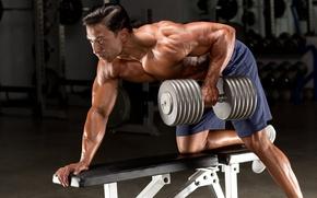 Картинка gym, bodybuilding, dumbbell, bodybuilder, back exercises