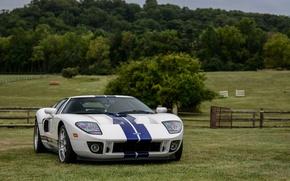 Картинка Ford, Blue, White, Stripes