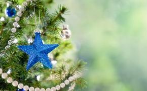 Картинка праздник, игрушка, звезда, новый год, рождество, ёлка, christmas, new year