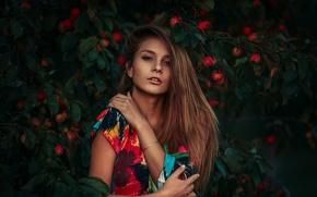 Картинка лето, взгляд, девушка, закат, лицо, узоры, портрет, платье, плоды, light, разноцветные, beautiful, beauty, чувство, inspiration, …