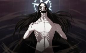 Картинка battlefield, game, star, Bleach, fighter, long hair, war, anime, fight, pain, evil, asian, manga, darkness, ...