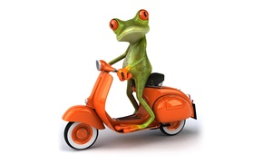 Картинка транспорт, графика, лягушка, мопед, Free frog 3d