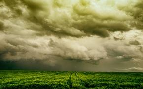 Картинка поле, небо, природа