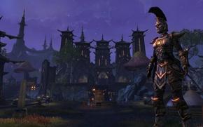 Картинка город, воин, The Elder Scrolls Online, ноч