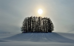 Обои небо, солнце, зима, холм, деревья, снег