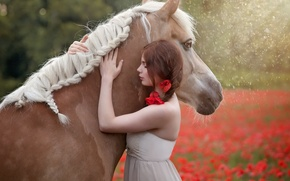 Картинка лето, девушка, конь
