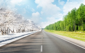 Обои дорога, разметка, лето, зима, деревья