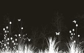 Обои Цветы, Луг, Бабочки, Ночь