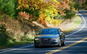 Картинка Audi, Авто, Дорога, Деревья, Улица, Седан, Передок