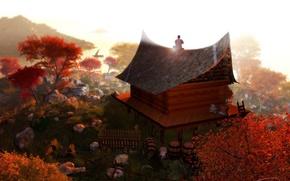 Картинка свет, дом, цвет