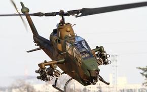Обои TAH-1, вертолет, Bell, Cobra