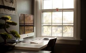 Картинка стол, комната, бонсай, растение, apple, окно, эппл, моноблок