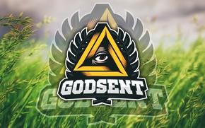 Картинка logo, grass, team, counter-strike, global offensive, meadow, csgo, cs go, esports, godsent