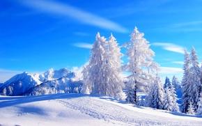 Картинка snow, горы, зима, дорога, white, path, sunset, trees, sky, лес, cool, снег, forest, природа, деревья, ...